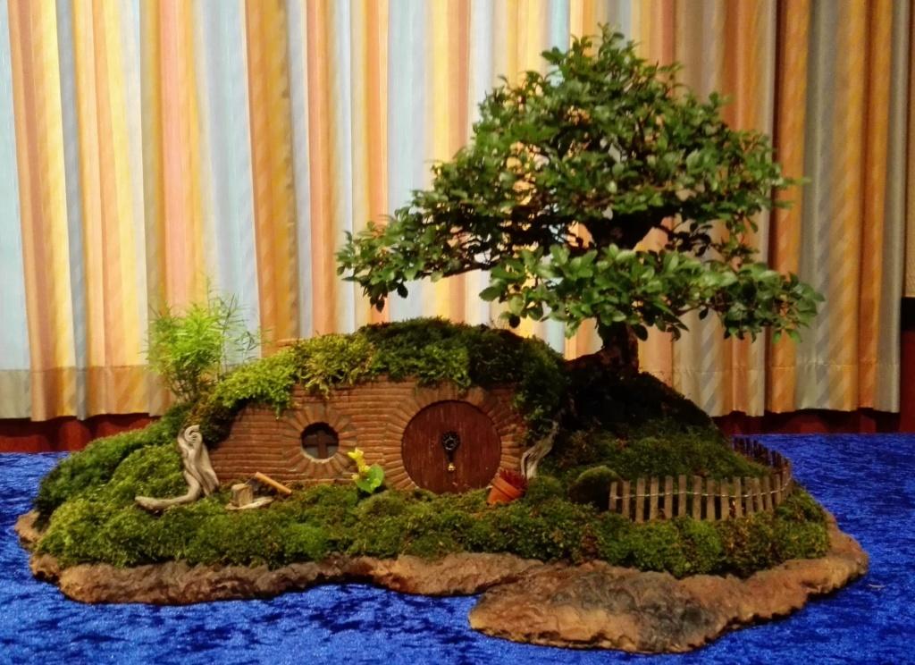 my take on the famous hobbit house bonsai Hobbit11
