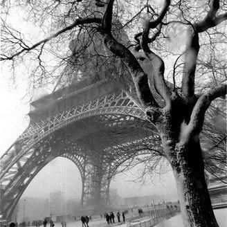 photos en noir et blanc 20008110