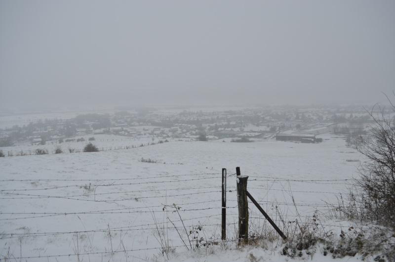 ohhhh de la neige !!! Dsc_0315