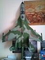 Quelques photos d'avions Dsc_1211