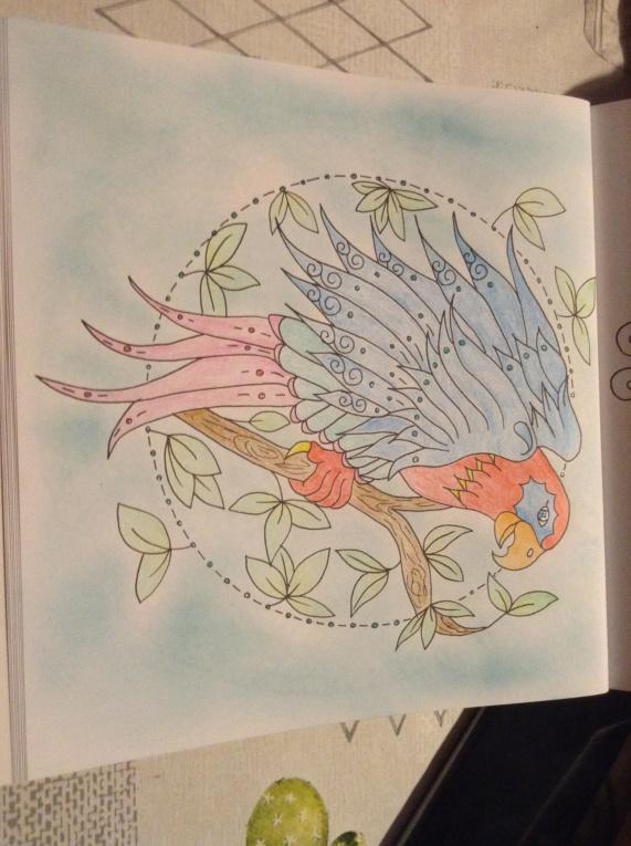 Crayons Da vinci de chez Action Img_0411