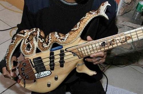 guitare customisée ............... Sans-t22