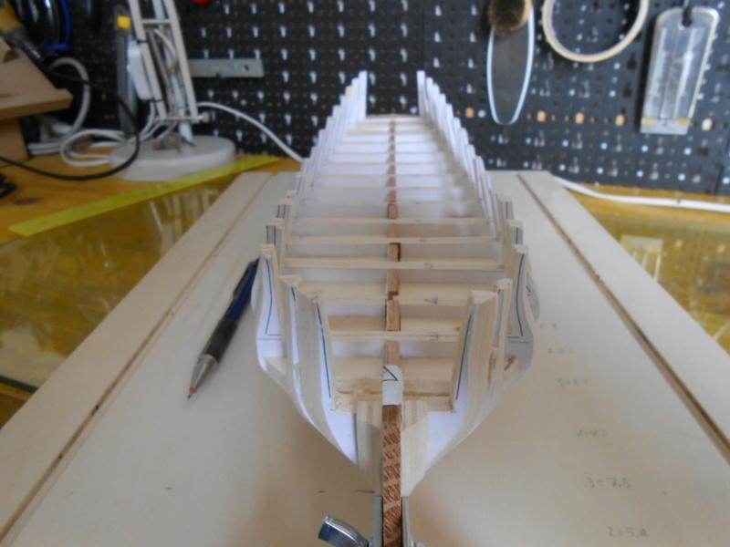 Fregata Renommeè  (Walter Furlan) Dscn8014