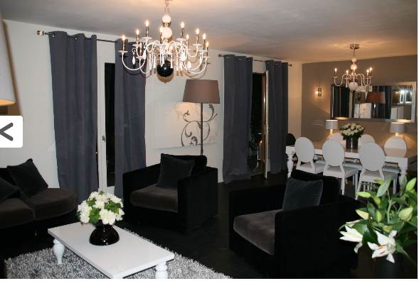 Idee Decoration Salon Meubles Noirs