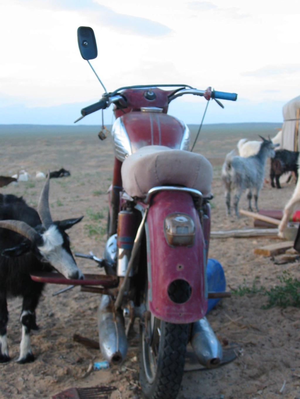 Raid en Mongolie - trail léger Mongol11