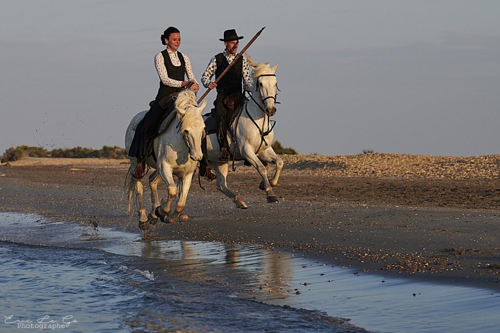 Promenade à cheval dans le Trièves Eric_l10