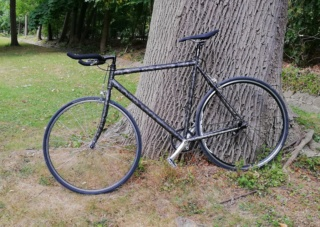 "Projet ""Single Speed"" - Page 7 Img_2021"