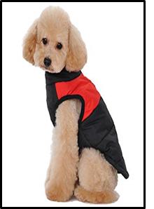 Manteau pour chien : Anorak en duvet Anorak11