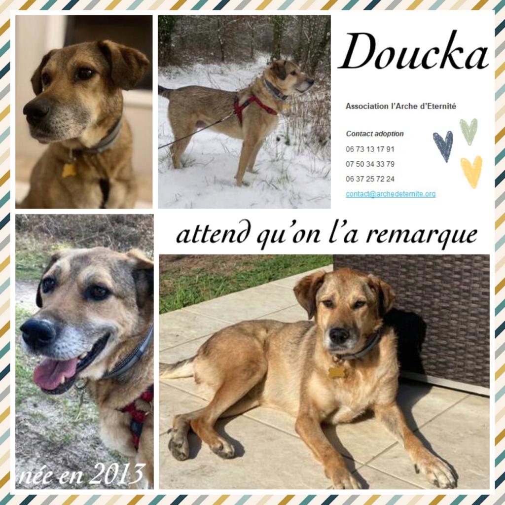 Affiches faites par Marion - Page 4 Doucka12
