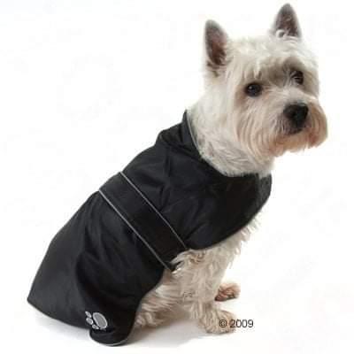Manteau pour chien : Trixie Tcoat Orléans Fb_img12