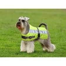 Manteau pour chien : Hi-Vis Dog Jacket Fb_img17