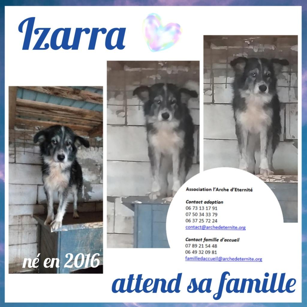 Affiches faites par Marion - Page 3 Izarra11