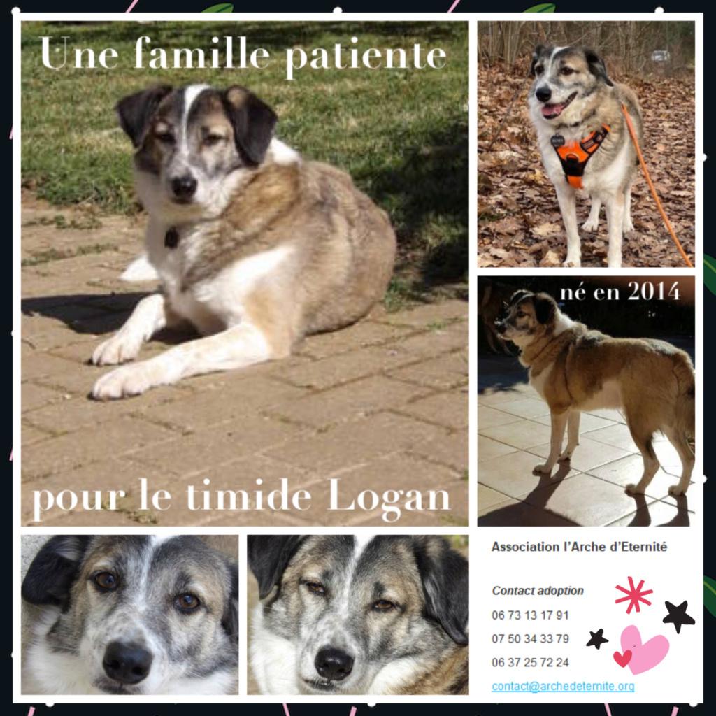 Affiches faites par Marion - Page 4 Logan212