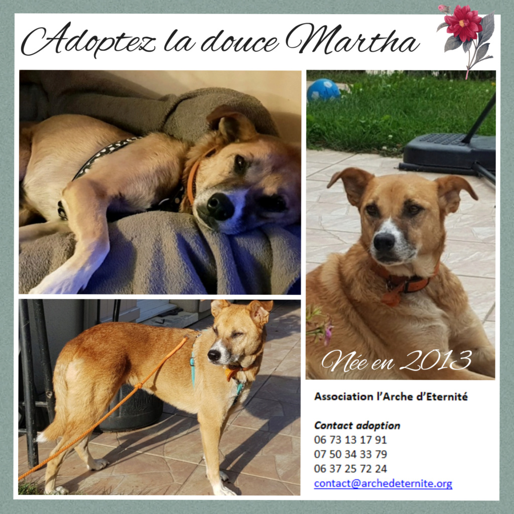 Affiches faites par Marion - Page 2 Martha12