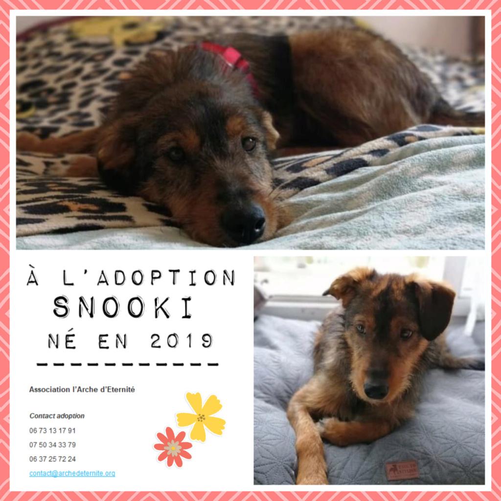 Affiches faites par Marion - Page 4 Snooki12