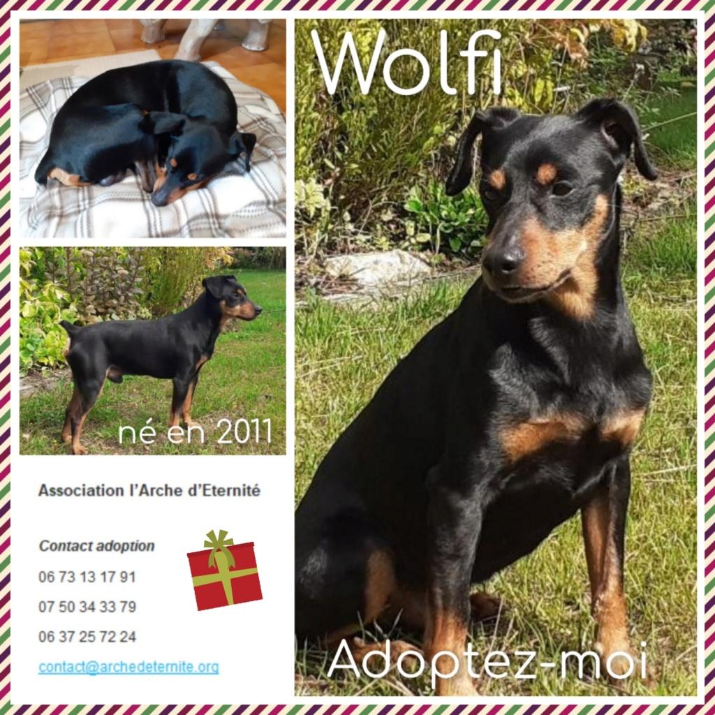 Affiches faites par Marion - Page 2 Wolfi10