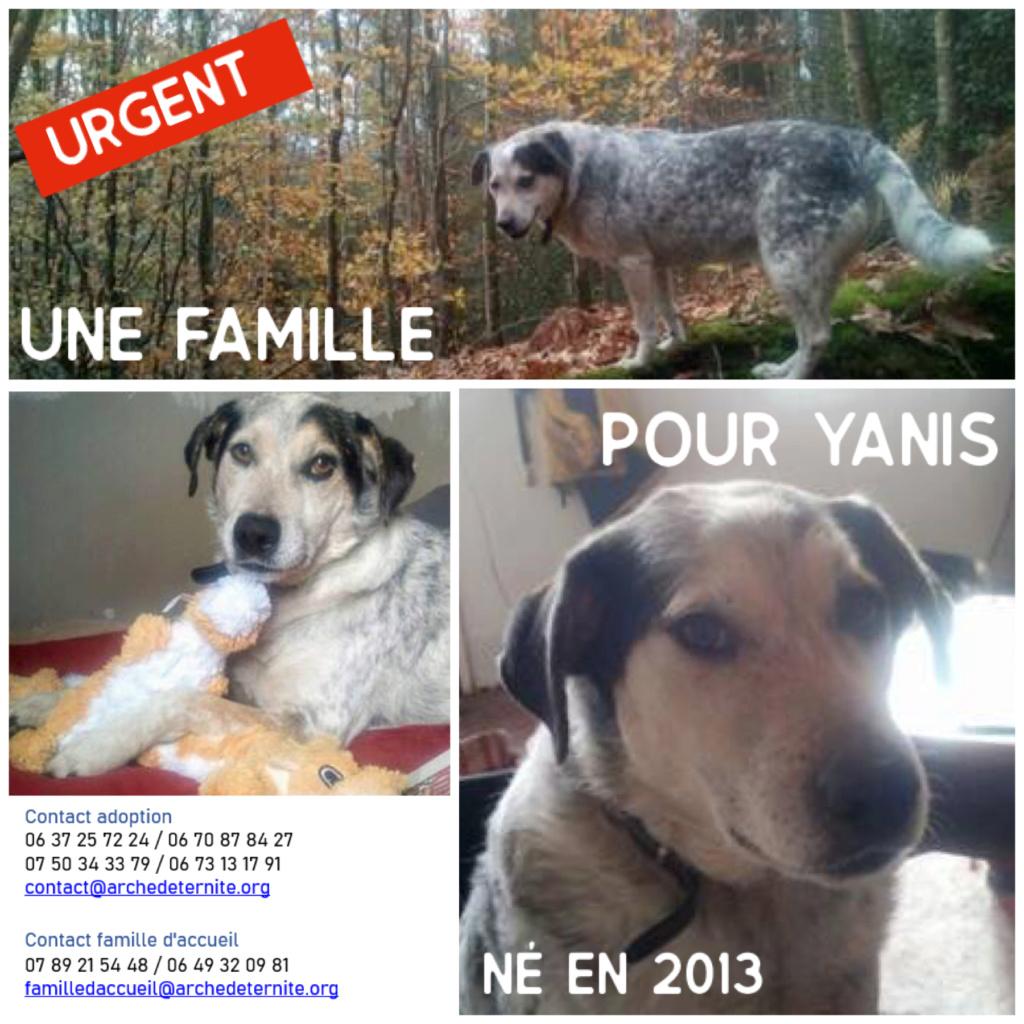 Affiches faites par Marion - Page 4 Yanis_12