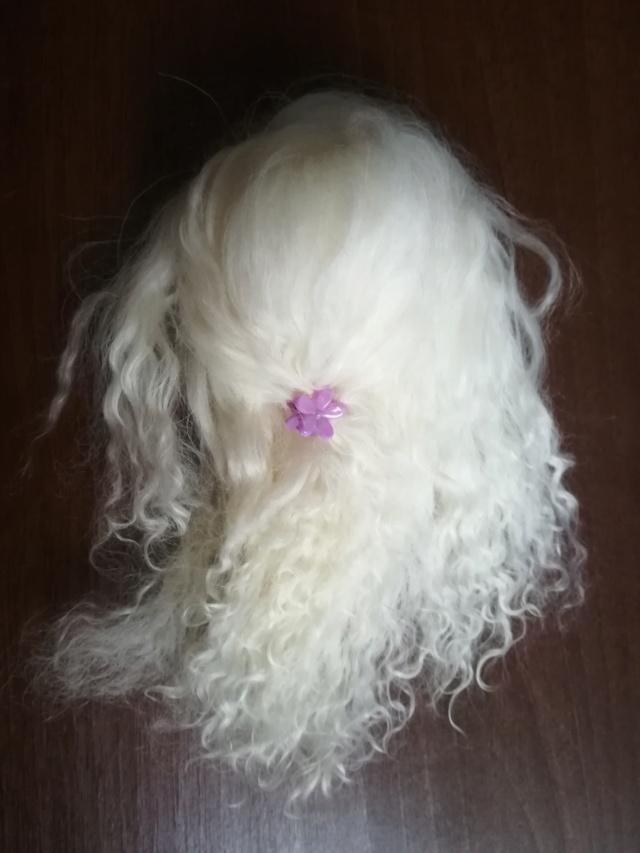[V] wigs 4/5 à 7/8 + yeux 10 à 16mm NEWS 12/03 Img_2070