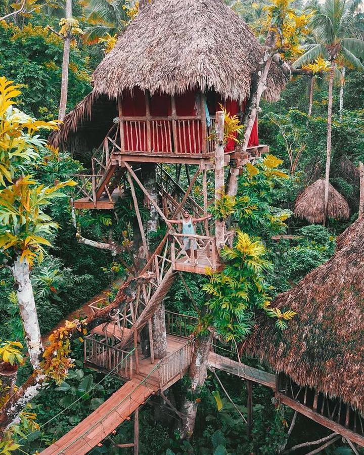 Un incroyable village de cabanes dans les arbres Images35