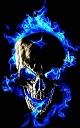 NEW PICS UPLOAD Skulls10