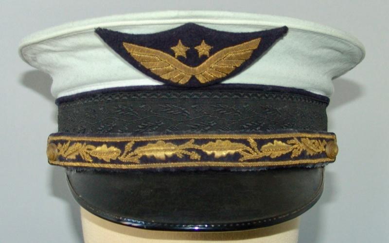 Général de brigade aérienne période Vichy - Aviation Dsc09535