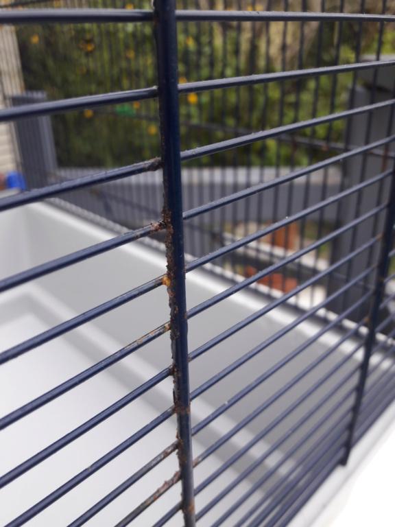 Dons cages + accessoires RP 20190333