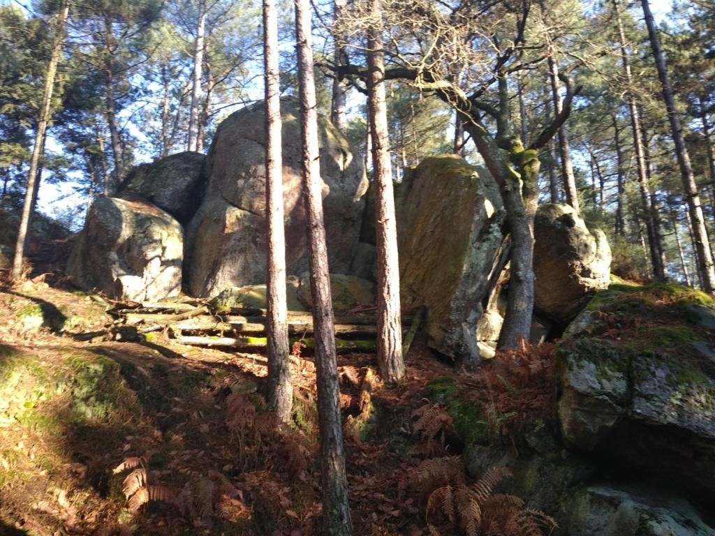 spot 35 forêt de st Aubin du Cormier. Img_2039