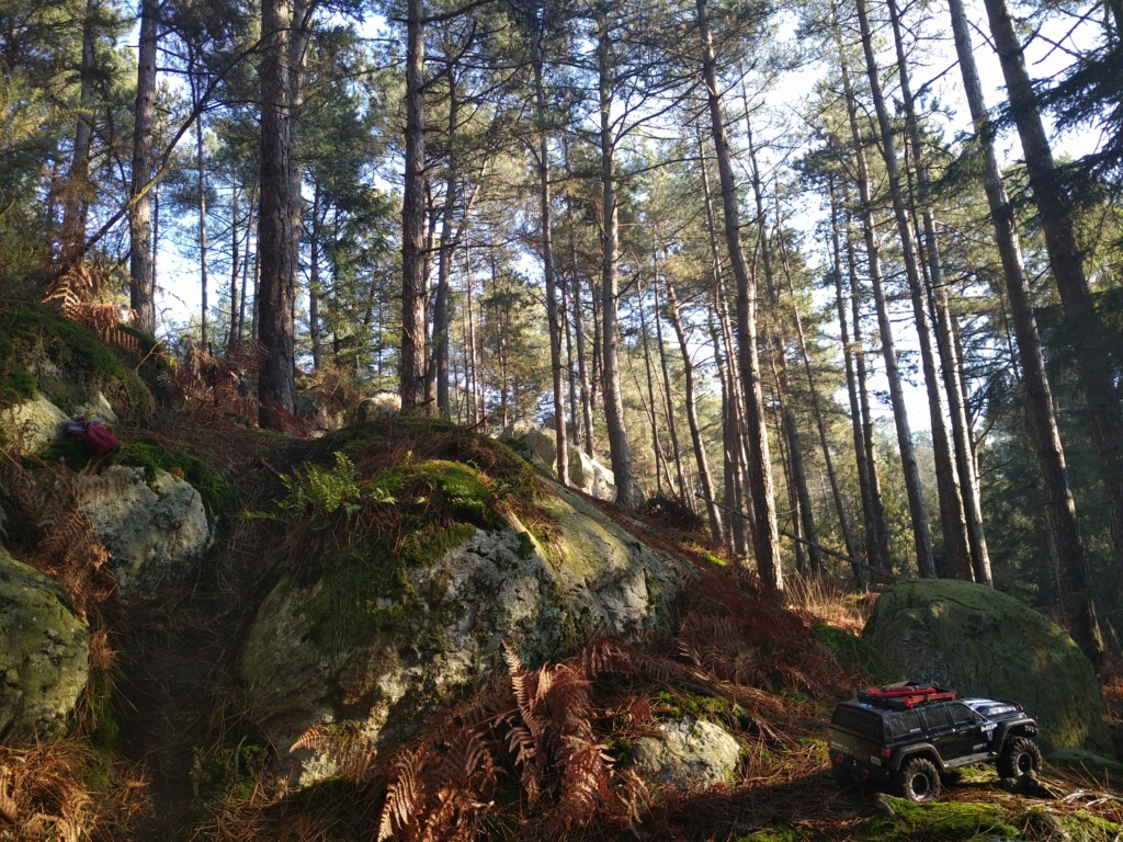 spot 35 forêt de st Aubin du Cormier. Img_2040
