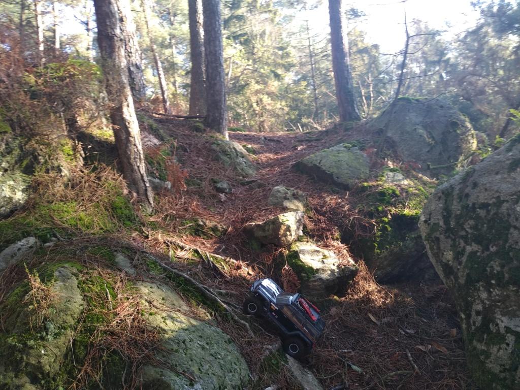 spot 35 forêt de st Aubin du Cormier. Img_2042