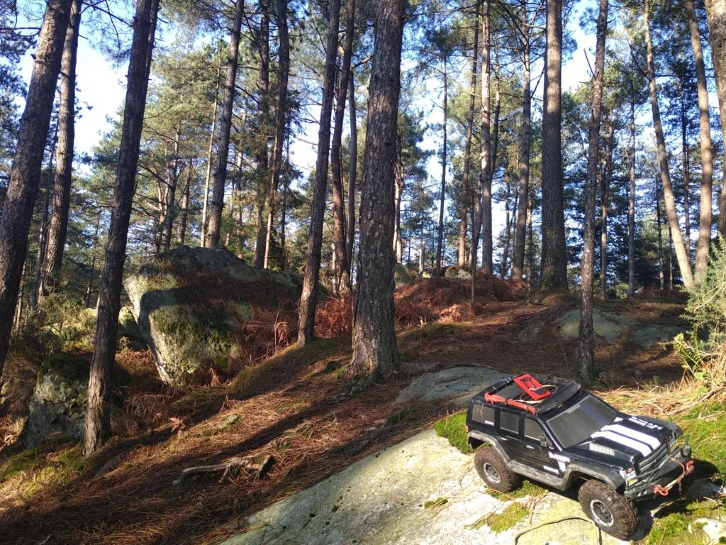 spot 35 forêt de st Aubin du Cormier. Img_2045