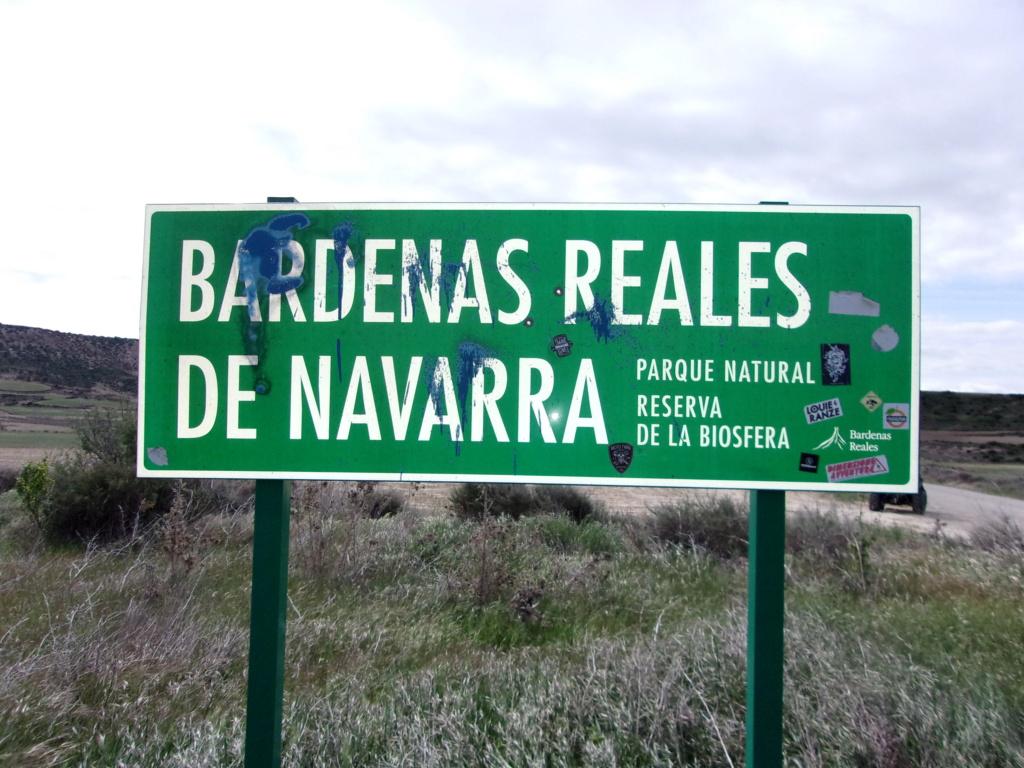 """Bardenas 2021 """"les ours bruns""""  teaser 100_0551"""