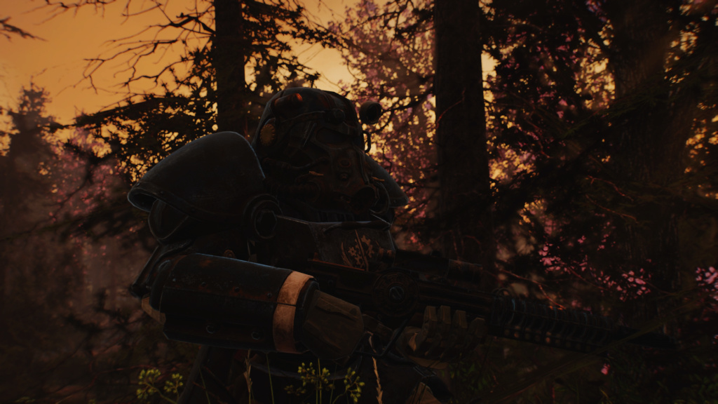 Fallout Screenshots XIII - Page 8 Scree144
