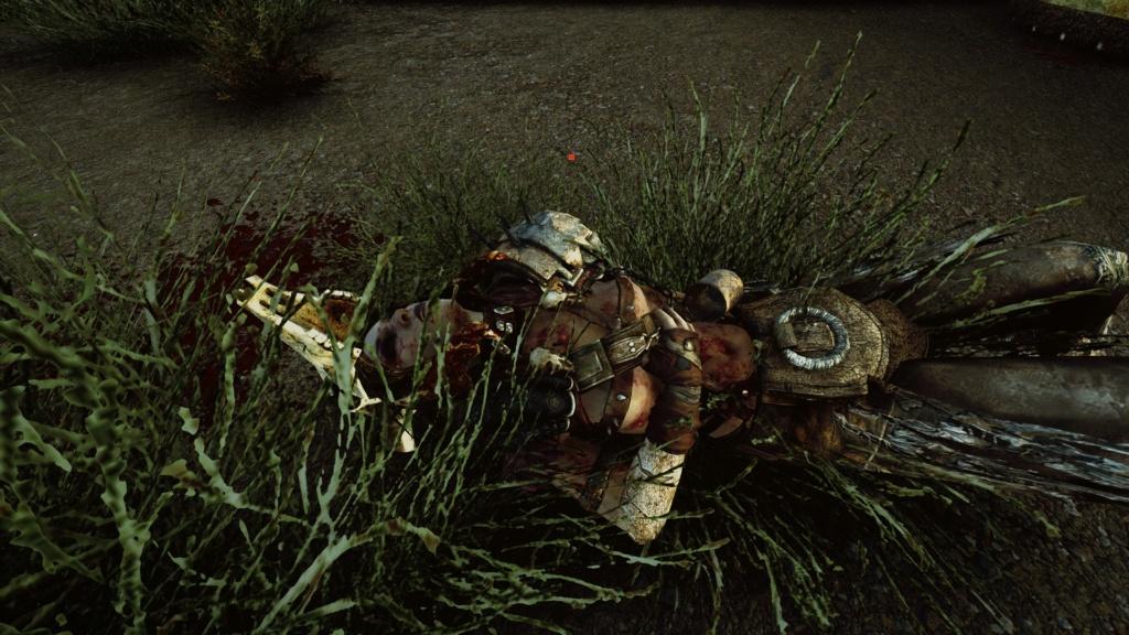 Fallout Screenshots XIV - Page 22 20200718