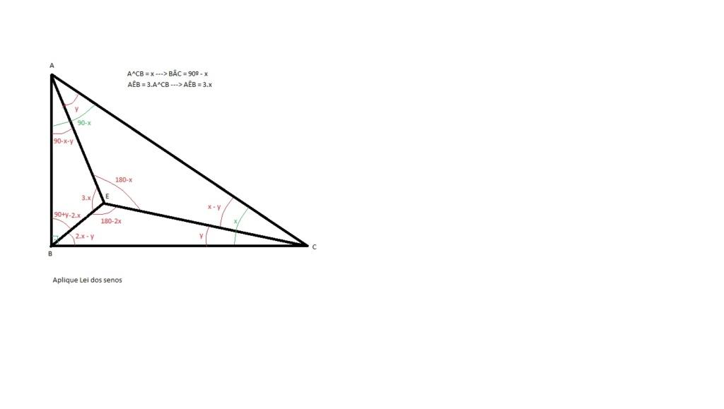 Triângulo Retângulo Terize10
