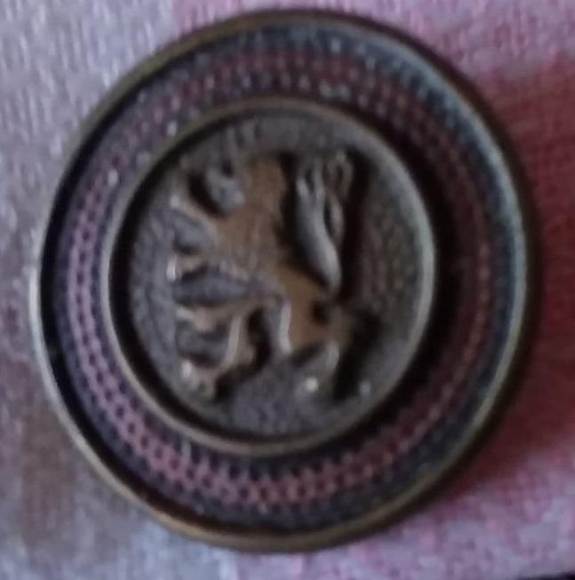 botón civil Img-2112