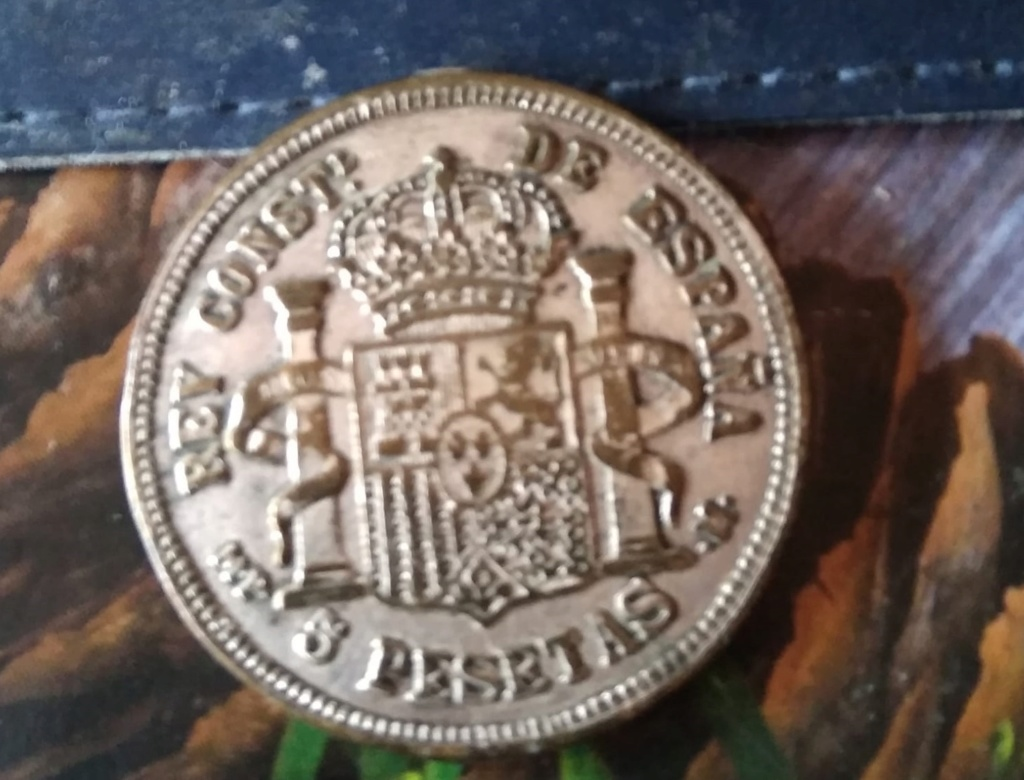 moneda falsa Img-2161