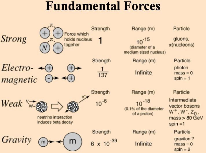 [Jeu] Association d'images - Page 13 Force10