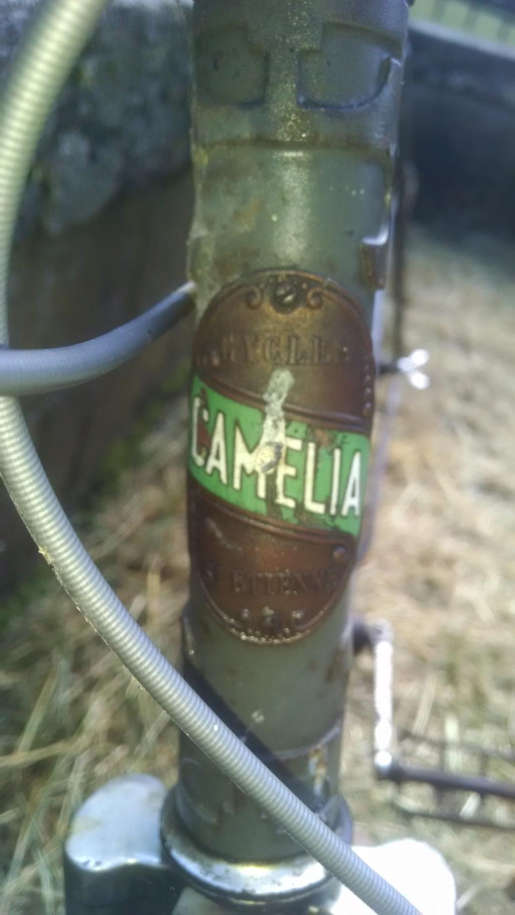 Identification vélo  Img_2010