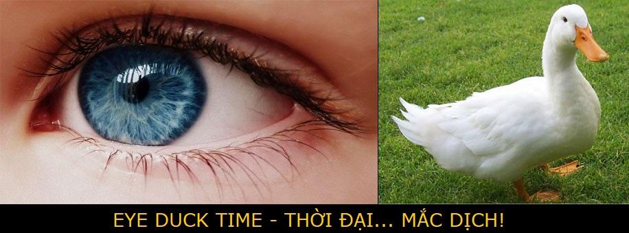 EYE-DUCK TIME Eye_du10