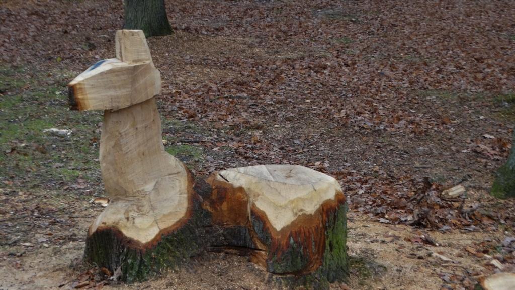 Sculptures à la tronçonneuse Dsc01811