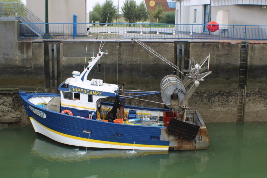 [Fil ouvert]  NAVIRES (tous les types) - Page 12 Img_2751