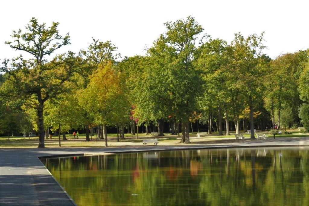 L'automne en ville Img_3211