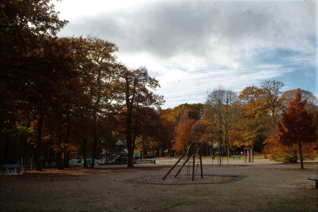 L'automne en ville - Page 2 Img_4226