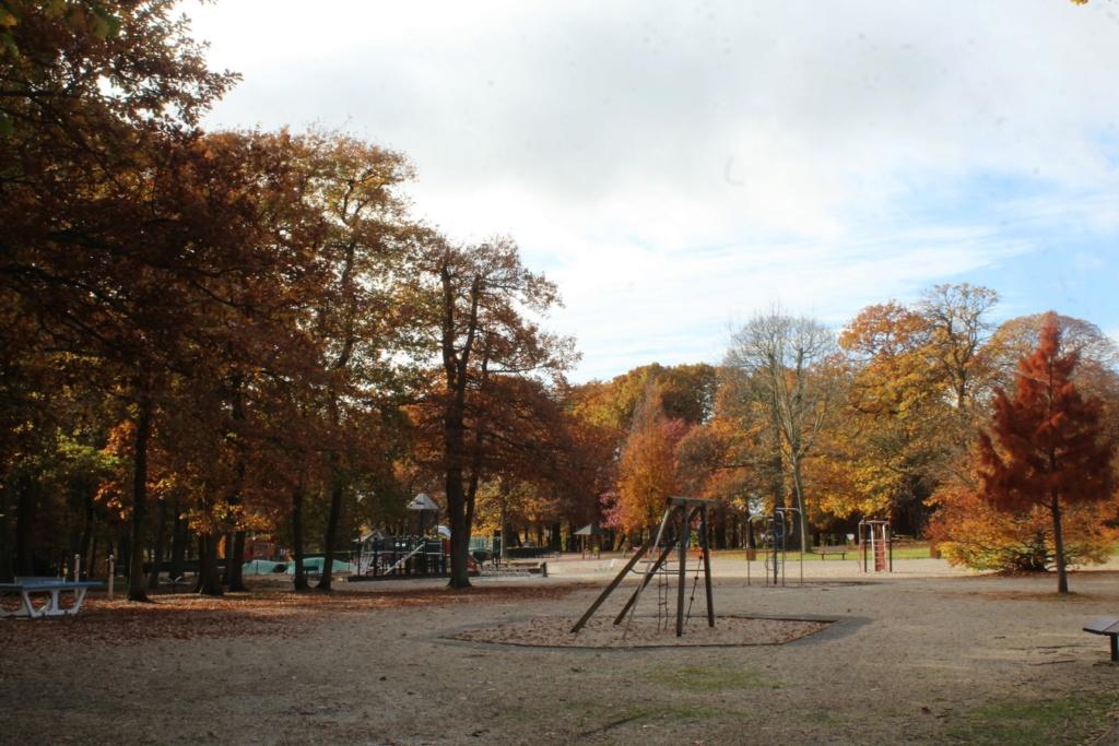 L'automne en ville - Page 3 Img_4227