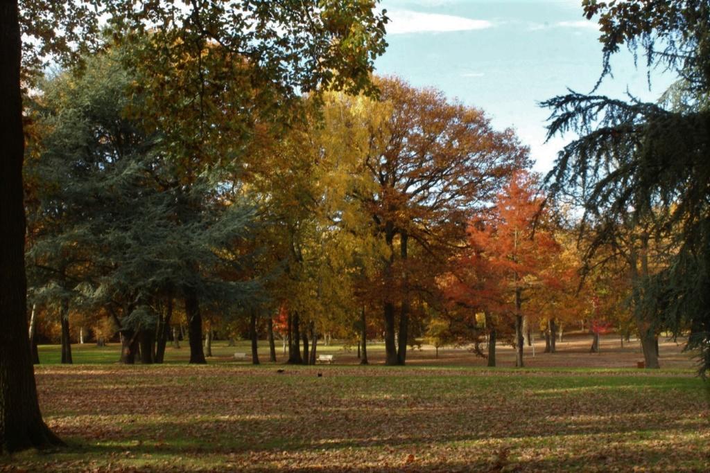 L'automne en ville - Page 2 Img_4311