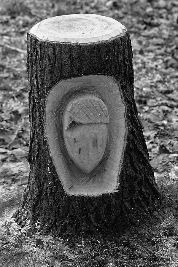 Sculptures à la tronçonneuse Img_4741