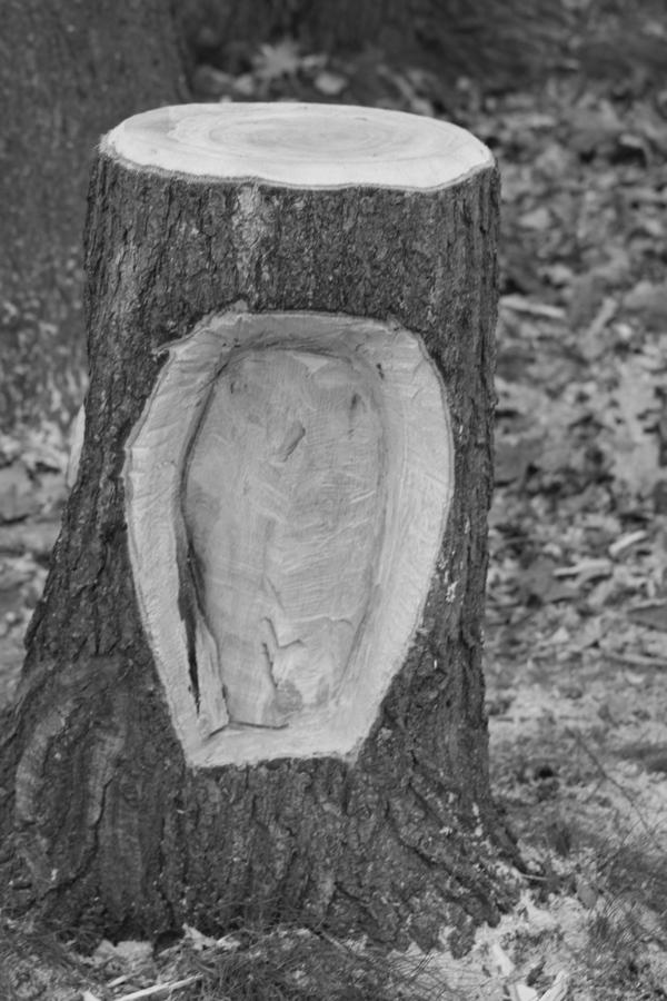 Sculptures à la tronçonneuse Img_4742