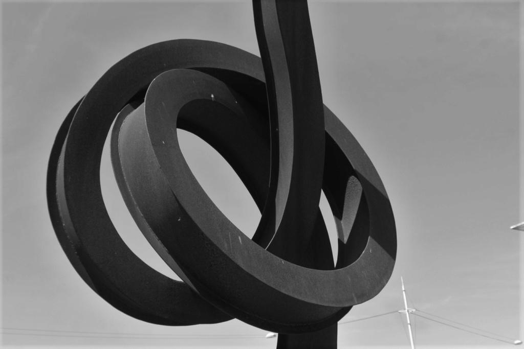 Thème du mois de juin 2019 : Courbe, rond, rondeur   Img_9525