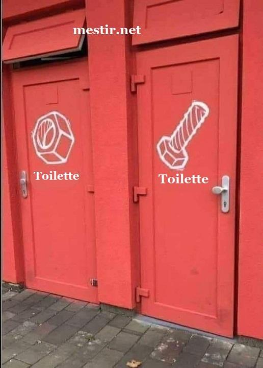 Les toilettes Toi11