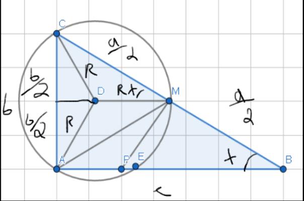 O círculo circunscrito ao quadrilátero CAMN tem perímetro igual a Screen41